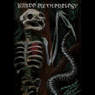 Bardo Methodology - IV