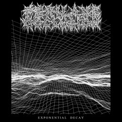 Perilaxe Occlusion - Exponential Decay